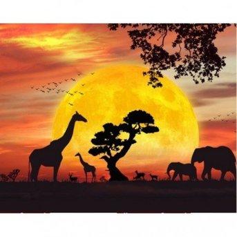 Artibalta Safari