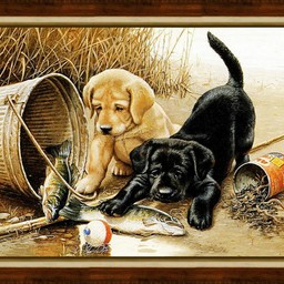 Artibalta Puppies Fishing