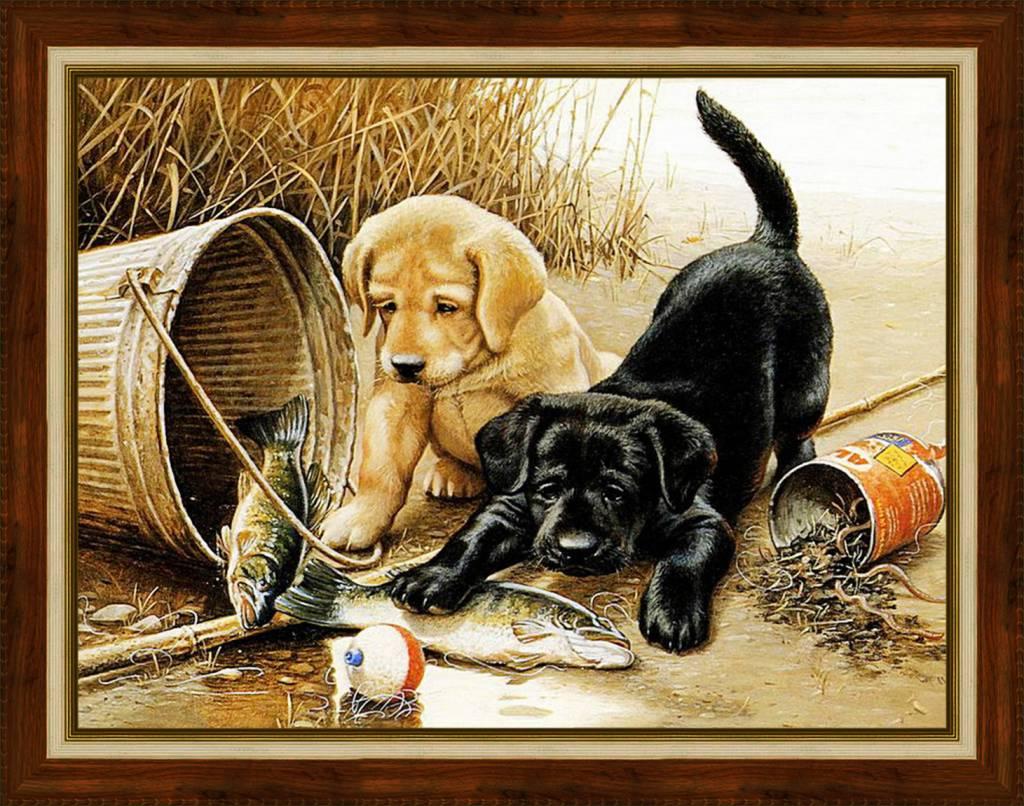Artibalta Puppies Fishing