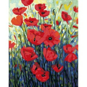 Artventura  Red Poppies