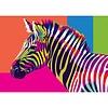Artventura Rainbow Zebra