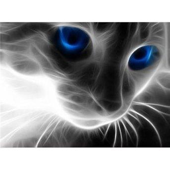 Artibalta Cat's Eye