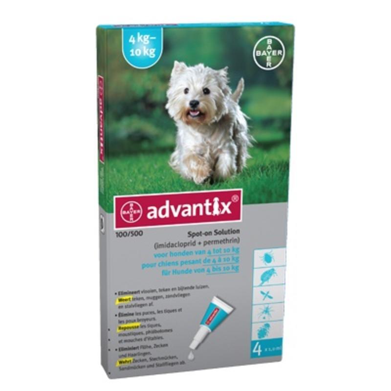 Effectief middel tegen vlooien en teken bij kleine honden