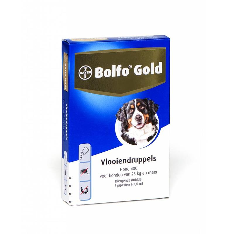 Bolfo Gold hond 400 (2 pipet)