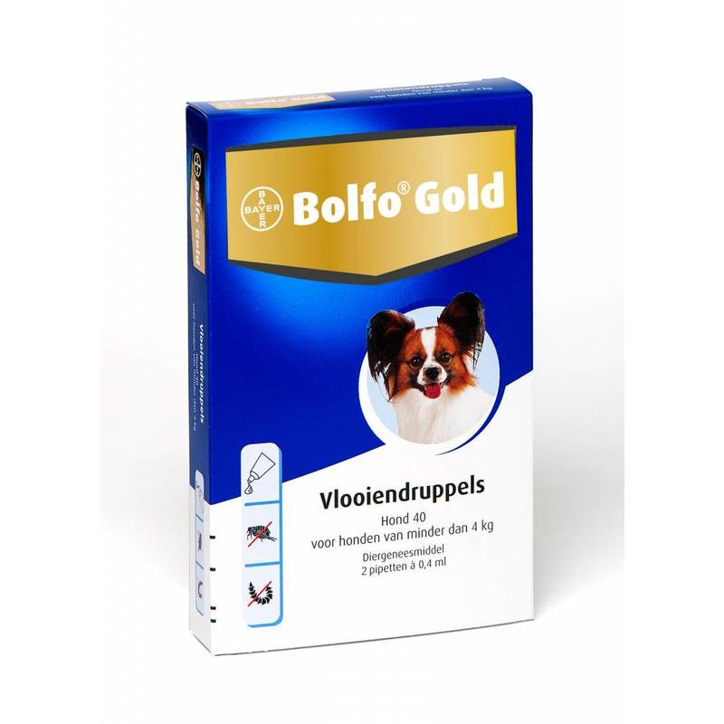 Bolfo Gold hond 40 (2 pipet)