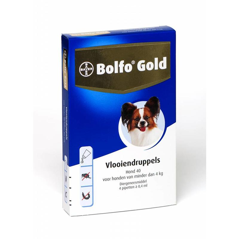 Bolfo Gold hond 40 (4 pipet)