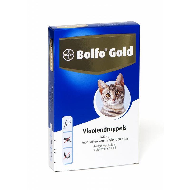 Bolfo Gold kat 40 (4 pipet)