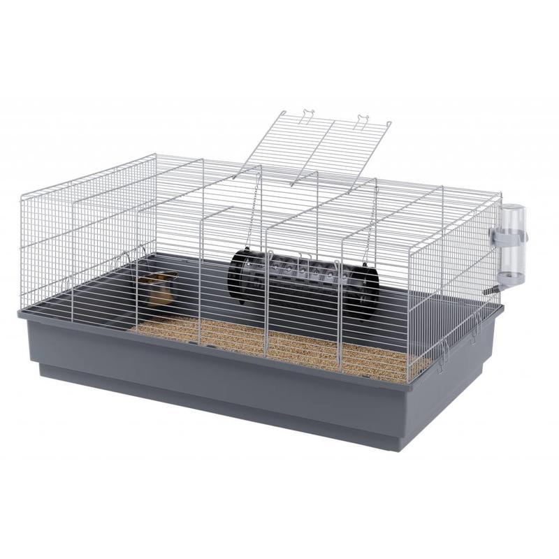 Basic ratten of goudhamsterkooi