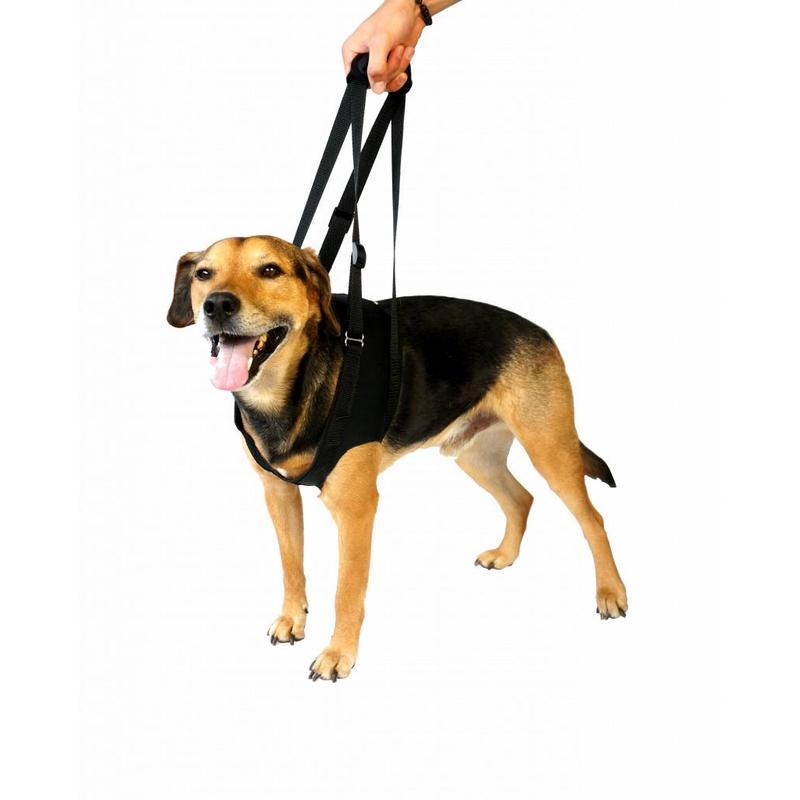 Vetlando loop -en draaghulp voor honden