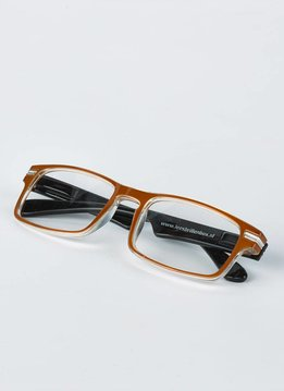 Lunettes de lecture de couleur brune