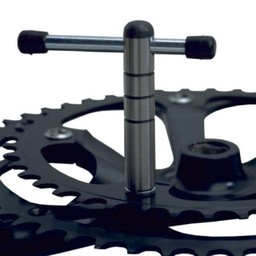 Cyclus Cyclus bladbout sleutel