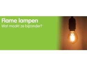 Flame lampen wat maakt ze bijzonder?