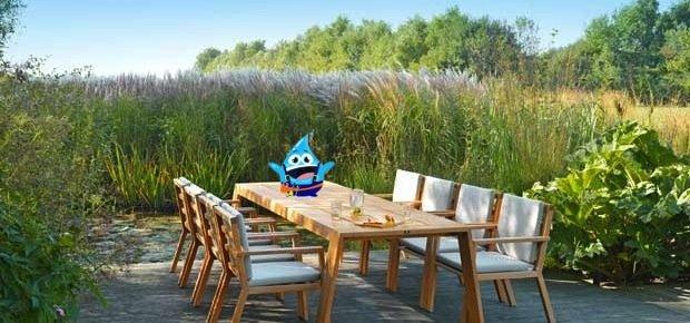 Privé: Voorjaar! Tijd voor het onderhouden van uw tuinhout.