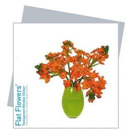 Flat Flowers Wenskaart + Raamsticker Zuiderwindlelie - Flat Flowers