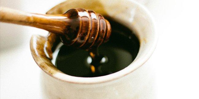 Liebling der Woche: More than honey