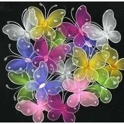 Vlinder trakatie versiering