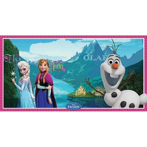 Frozen muur poster / foto achtergrond