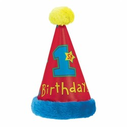 eerste verjaardag feesthoedje transport (1 stuks)