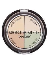 Correction palette