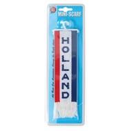 All Ride Mini scarf Holland