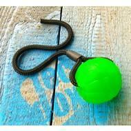Swing & Fling Chew Ball