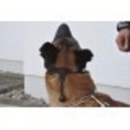 COP K9 box muzzle soft
