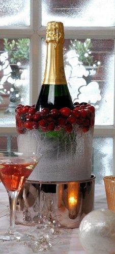Nice Ice Cooler, Trendy wijnkoeler