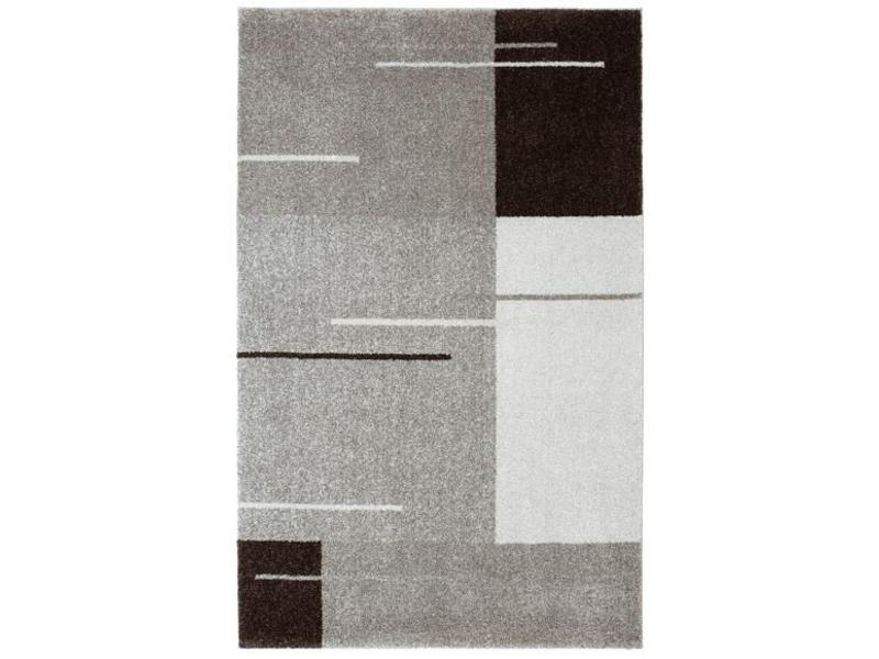 Tapis gris design