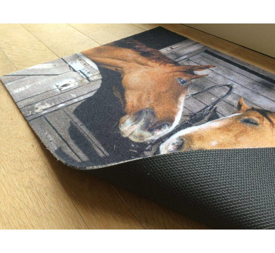 Tapis motif chevaux, 40x60cm et 50x80cm