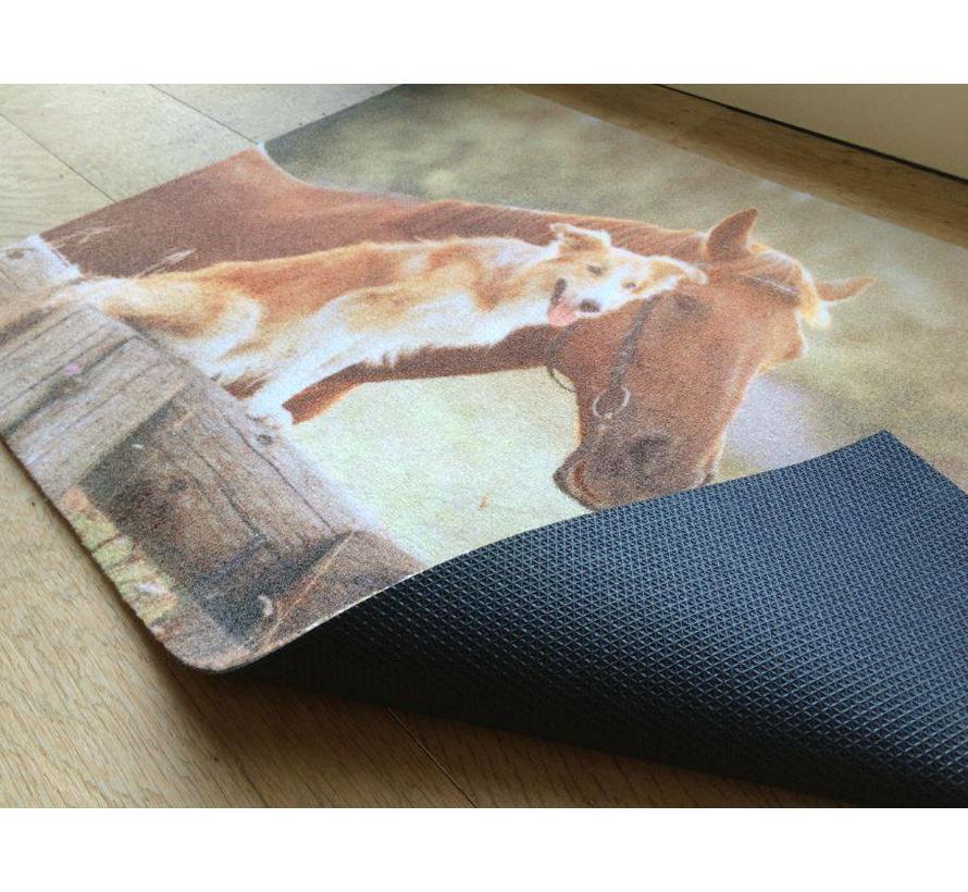 tapis d'entrée photo chien et cheval, 40x60cm et 50x80cm