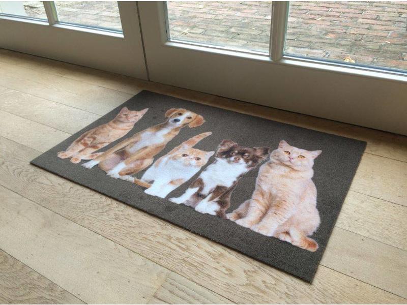 paillasson motif chats et chiens, 40x60cm et 50x80cm