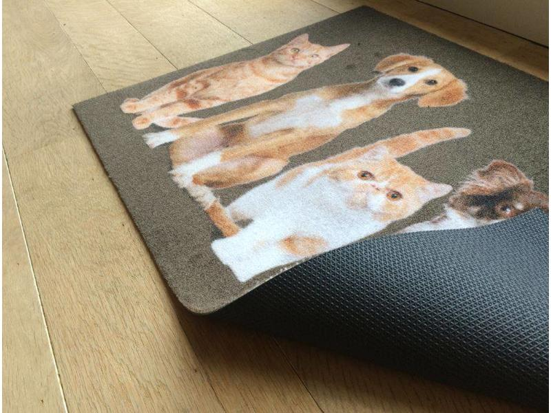 Paillasson Motif chats et chiens 50x80cm