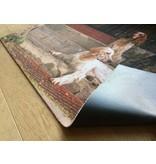 Deurmat met honden foto 60x90cm