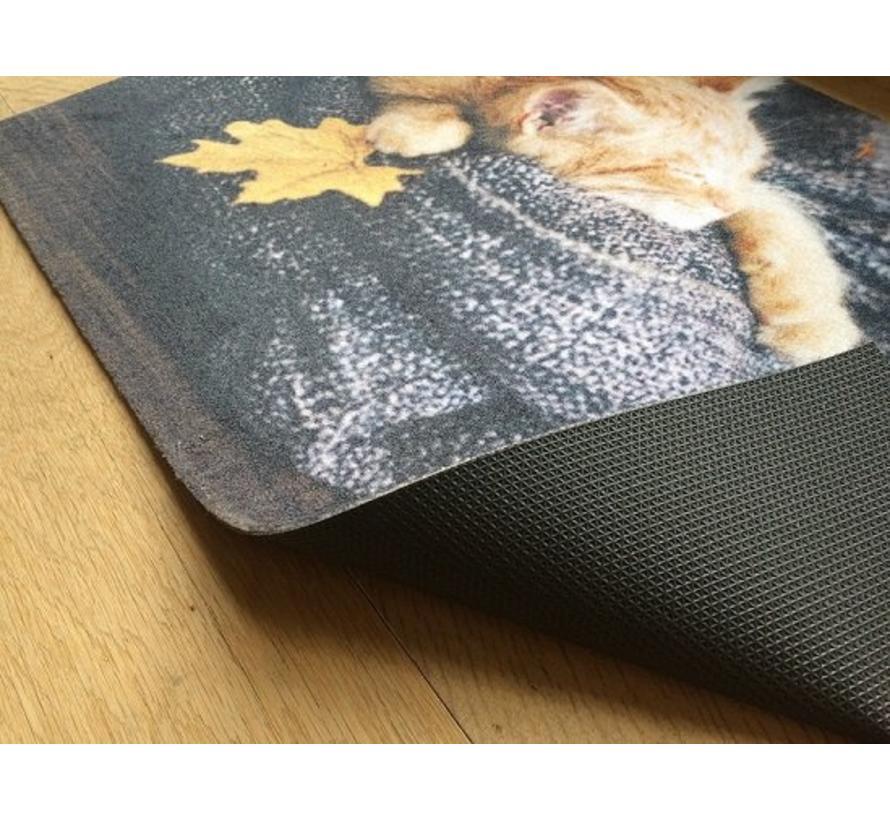 Paillasson motif chat 40x60cm et 50x80cm