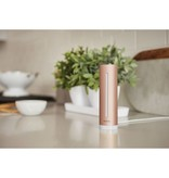 Netatmo Heathly Home Coach
