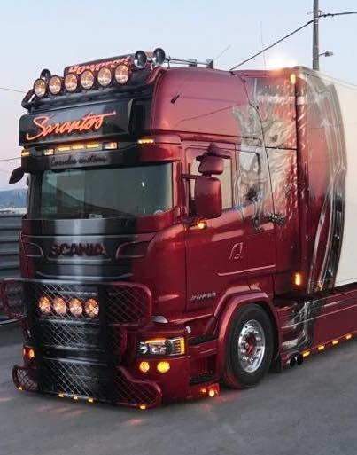 Windscreen Guard voor Scania