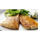 Scholfilet vers, 2 filets (ca.200g)