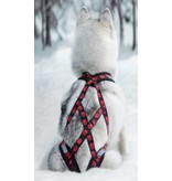 Weight Pulling Dog Harness, X - Back Style for Canicross, Bike, Sled, Scooter, Bike-, Ski-Joring, Jogging,... red paws