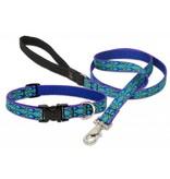 Lupinepet Hundehalsband Rainsong / Breite 19mm