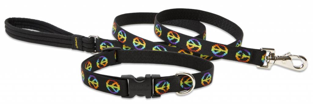 Lupinepet Hundehalsband Woofstock / Breite 19mm