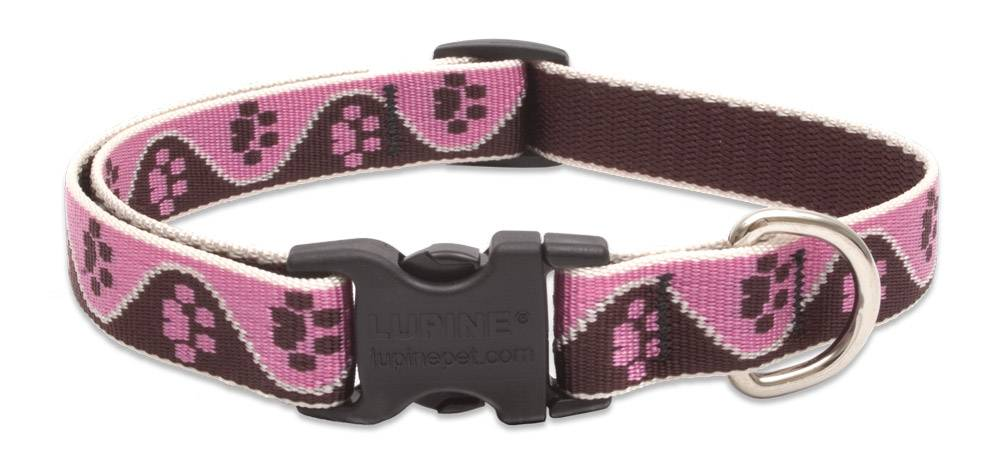 Lupinepet Hundehalsband Tickled Pink / Breite 19mm