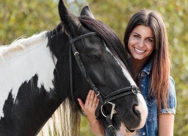 Pferdepflege