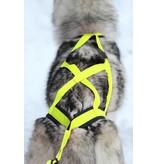 Northern Howl Northern Howl Hunde Zuggeschirr X-Back Style für Canicross Bike-,Ski-Joring, Scooter, Schlitten, Jogging Neon Gelb