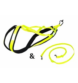 Weight Pulling Dog Harness, X - Back Style - NEON YELLOW + Leash