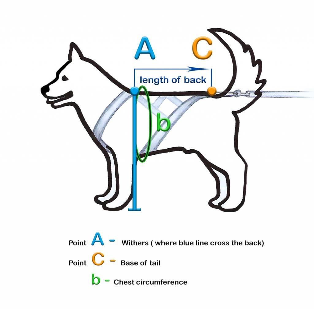Hunde Zuggeschirr X Back Style inkl.Zugleine für Bike-,Ski-Joring,Scooter,Schlitten, jogging - Schwarz