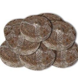 Kokos Quelltabletten