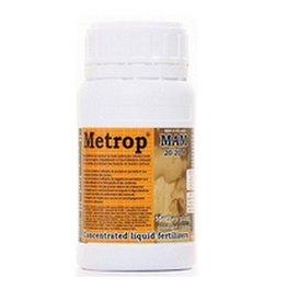 Metrop MAM - Mutterpflanze