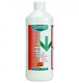 Canna pH- 38% Pro Blüte
