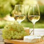 Wijn maak pakket