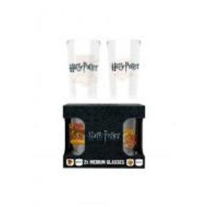 Merchandising HARRY POTTER - Twin Medium Glasses 275ml - Quiditch